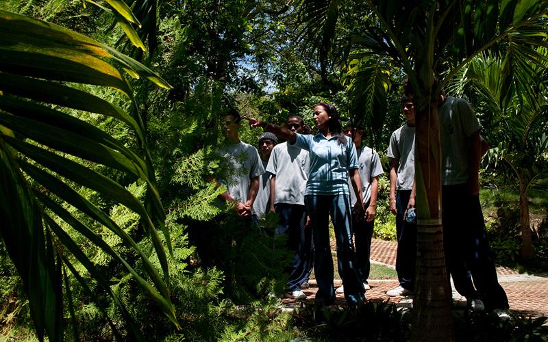 Jard n bot nico acoge semana por la sostenibilidad for Sanse 2016 jardin botanico