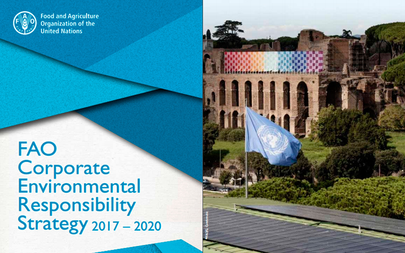 FAO Corporate Environmental Responsibility Strategy 2017–2020